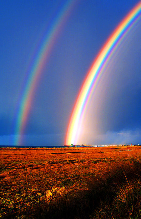 End Of The Rainbow Photograph - End Of The Rainbow by Ron Regalado
