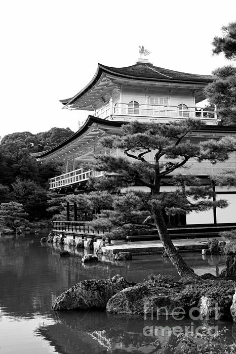 Black And White Photograph - Golden Pagoda In Kyoto Japan by David Smith