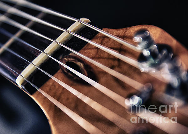Abstract Photograph - Guitar Strings by Stelios Kleanthous