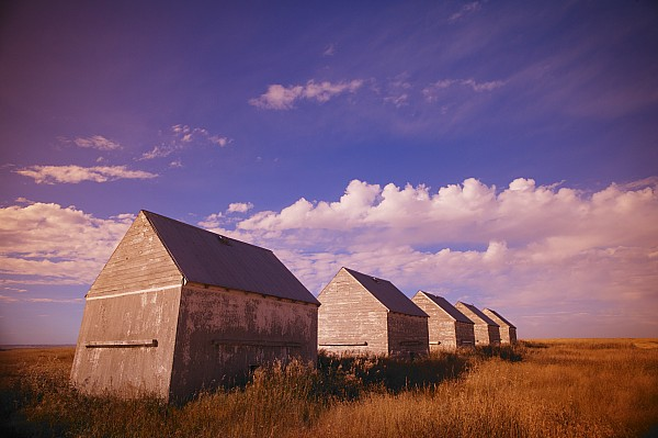 Barn Photograph - Row Of Old Farm Houses by Kelly Redinger