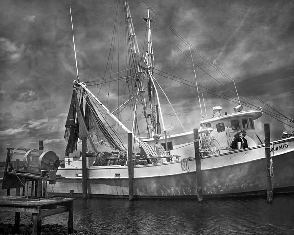 Shrimp Photograph - Shrimpin Boat Captain And Mates by Betsy Knapp