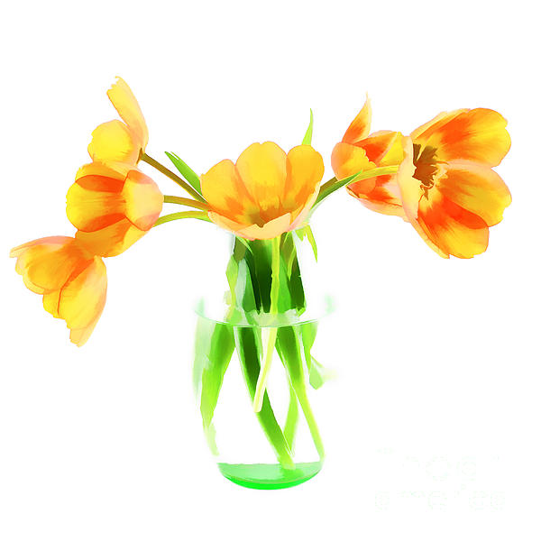 Arrangement Photograph - Spring Tulips by Darren Fisher