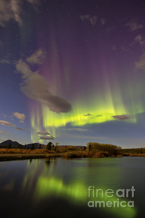Vertical Photograph - Aurora Borealis With Moonlight At Fish by Joseph Bradley