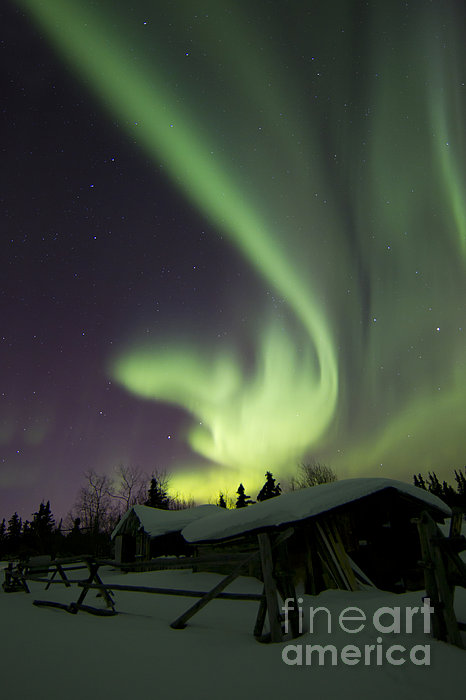 Vertical Photograph - Aurora Borealis And The Big Dipper by Joseph Bradley