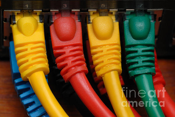 Access Photograph - Ethernet Cables Plugged Into Router by Amy Cicconi