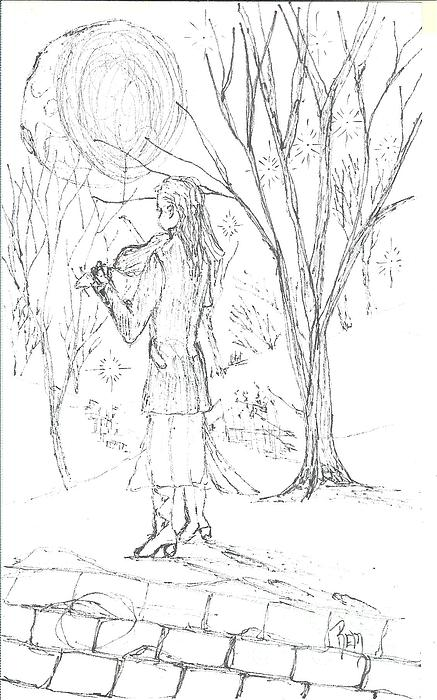 Pen And Ink Drawing - A Song For The Night - Sketch by Robert Meszaros