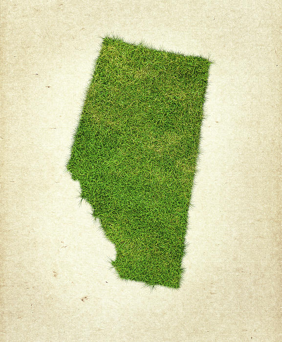 Map Of Alberta Photograph - Alberta Grass Map by Aged Pixel