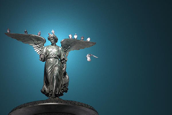 Bethesda Fountain Photograph - All The Winged Creatures In Blue by Joanna Madloch