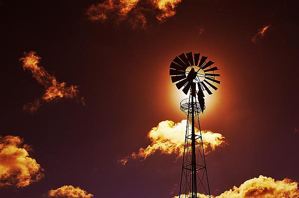 Marco Oliveira Photograph - American Windmill by Marco Oliveira