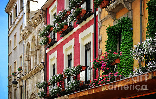 Balconies Of Leon Photograph - Balconies Of Leon by Mary Machare