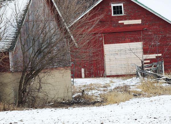 Red Barn In Winter Photograph - Barn 36 by Todd Sherlock
