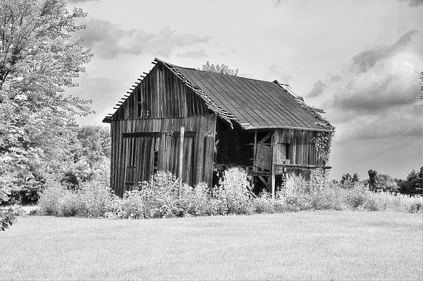 Barn Half Open Photograph  - Barn Half Open Fine Art Print