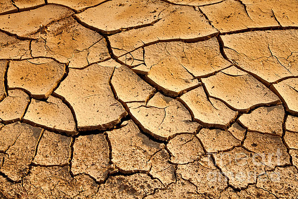 Beautiful  Photograph - Beautiful Dry Land by Boon Mee