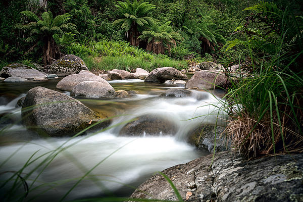 Rocky Valley Creek Photograph - Between Fire And Tempest by Mark Lucey