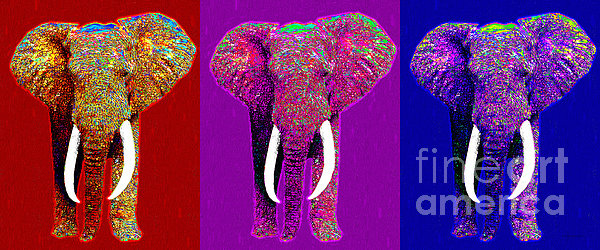Elephant Photograph - Big Elephant Three 20130201v2 by Wingsdomain Art and Photography