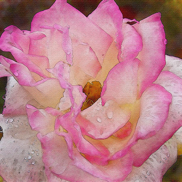 Blossoming Happiness Watercolor Photograph  - Blossoming Happiness Watercolor Fine Art Print