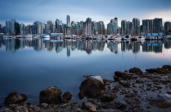 Vancouver Photograph - Blue Steel by Alexis Birkill