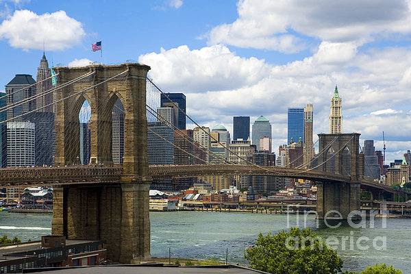 Diane Diederich - Brooklyn Bridge