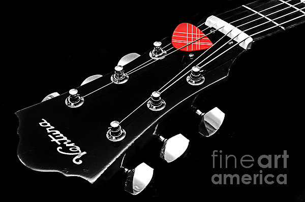 Andee Photography - BW Head Stock With Red Pick