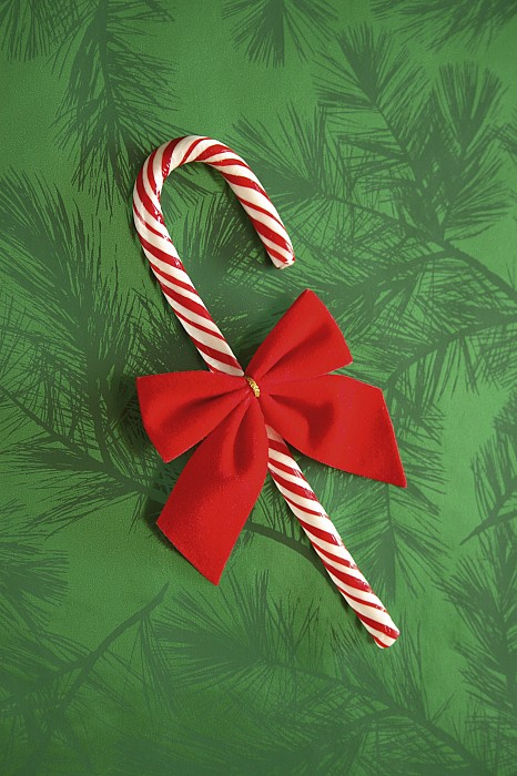 Candy-cane Photograph - Candy Cane by Colette Scharf