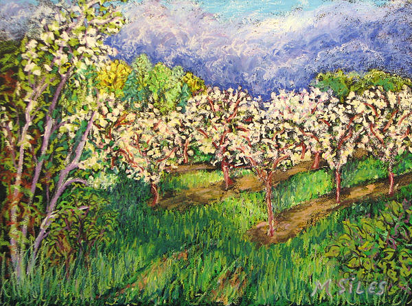Cherry Orchard Glow Painting  - Cherry Orchard Glow Fine Art Print