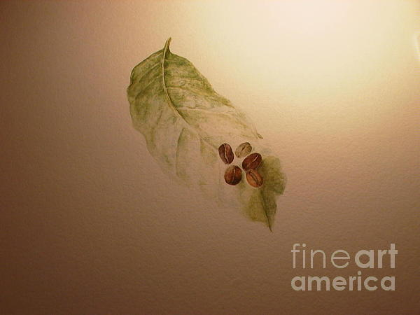 Laura Hamill - Coffee Beans on Coffea arabica leaf