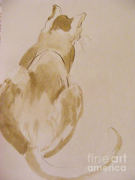 A Quick Sketch Done In Ink Is Always A Fun Performance.   Painting - Coo Coo Michelle by Nancy Kane Chapman