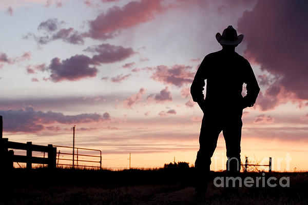 Cowboy Photograph - Cowboy Sunset by Cindy Singleton