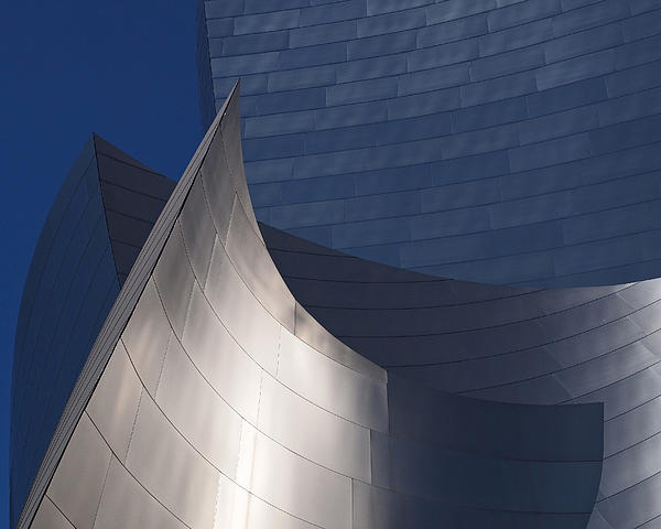 Rona Black - Disney Hall Abstract