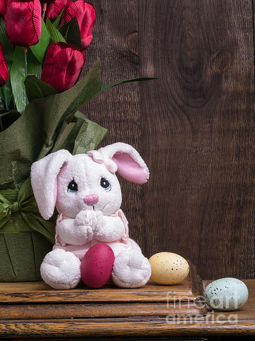 Easter Photograph - Easter Bunny by Edward Fielding