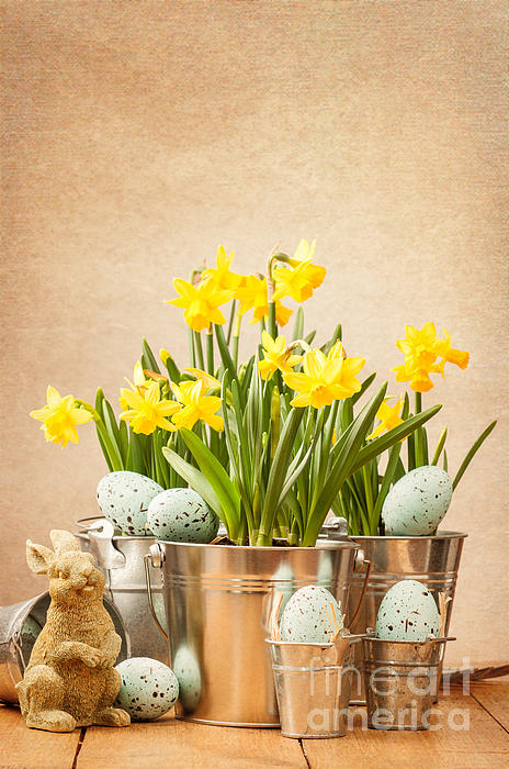 Spring Photograph - Easter Setting by Amanda Elwell