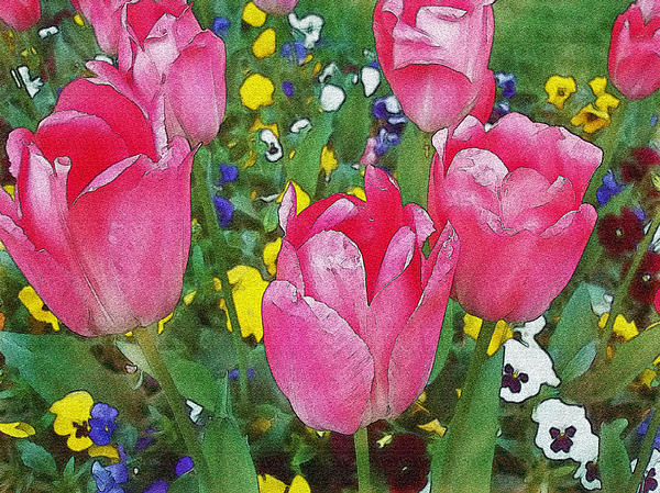 Family Of Tulips Watercolor Photograph  - Family Of Tulips Watercolor Fine Art Print
