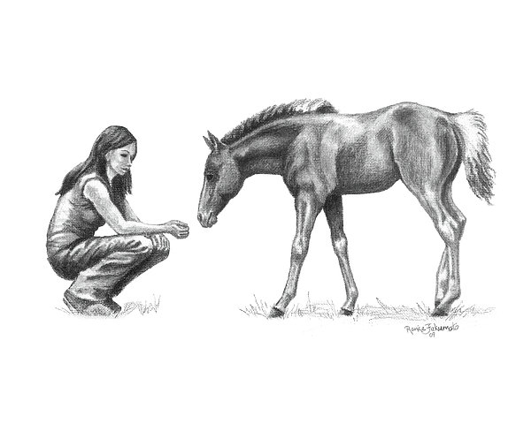 Horse Drawing - First Love Girl With Horse Foal by Renee Forth-Fukumoto