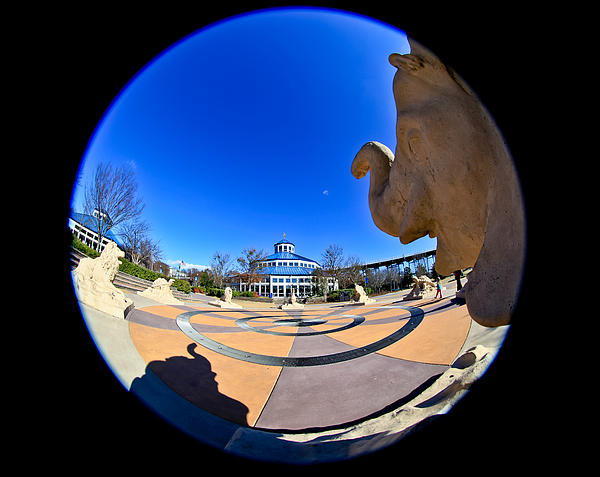 Chattanooga Photograph - Fish Eye View Of Coolidge Park by Tom and Pat Cory