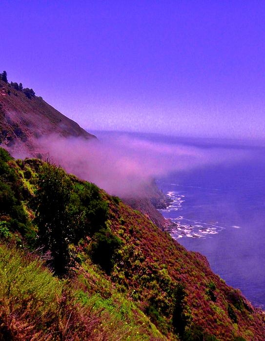California Photograph - Floating Fog by Sharon Costa