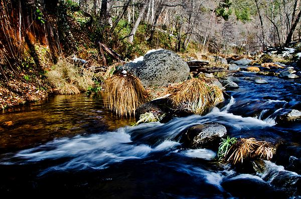 Flowing Photograph  - Flowing Fine Art Print