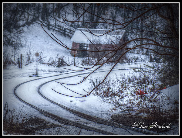 Photograph - Follow The Tracks In The Snow by Missy Richards
