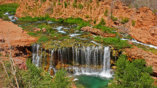 Landscape Photograph - Hike Into Havasupai  by Michael J Bauer