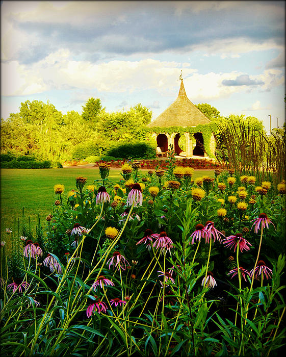 Collections By Carol Photograph - Landscape Artist by Carol Toepke