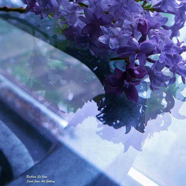 Barbara St Jean - Lilac Glass