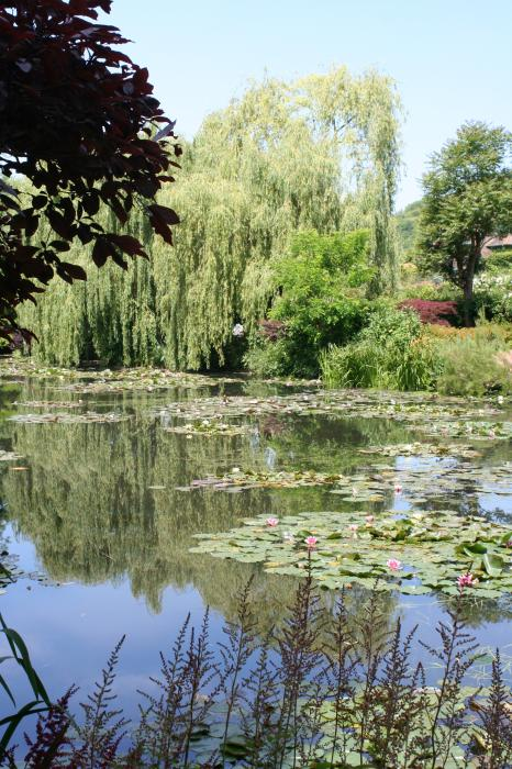Lily Pond - Monets Garden - France Photograph