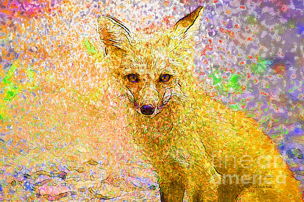 Fox Photograph - Little Red Fox by Claire Bull