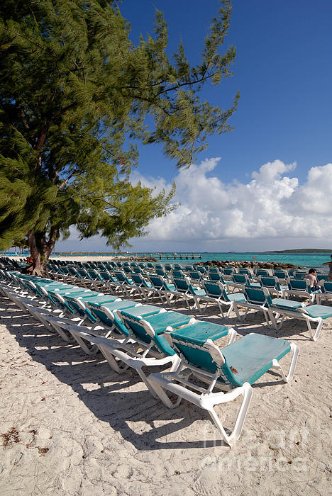 Bahamas Photograph - Lounge Chairs On The Beach by Amy Cicconi