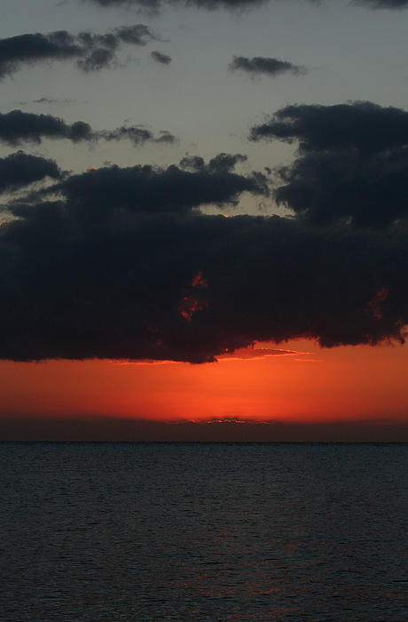 Cozumel Photograph - Love Is A Burning Thing by Laurie Search