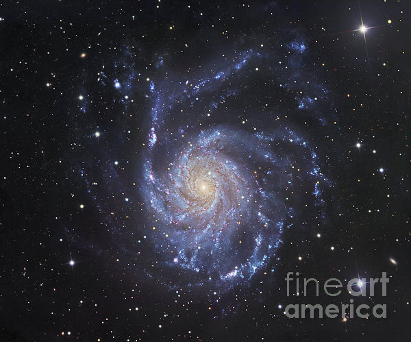 Universe Photograph - M101, The Pinwheel Galaxy In Ursa Major by Robert Gendler