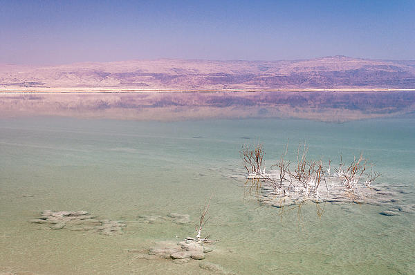 Middle East Photograph - Magic Colors Of The Dead Sea by Sergey Simanovsky