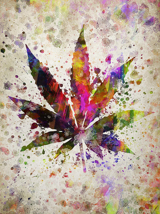 Marijuana Leaf In Color Queen Duvet Cover For Sale By Aged