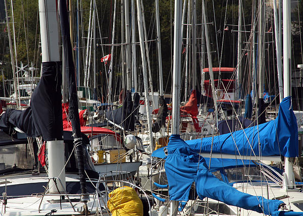 Masts Photograph - Masts by Jim Nelson