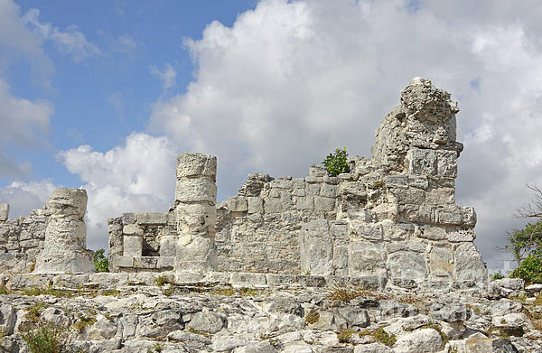 Mexico Photograph - Mayan Ruins by Charline Xia
