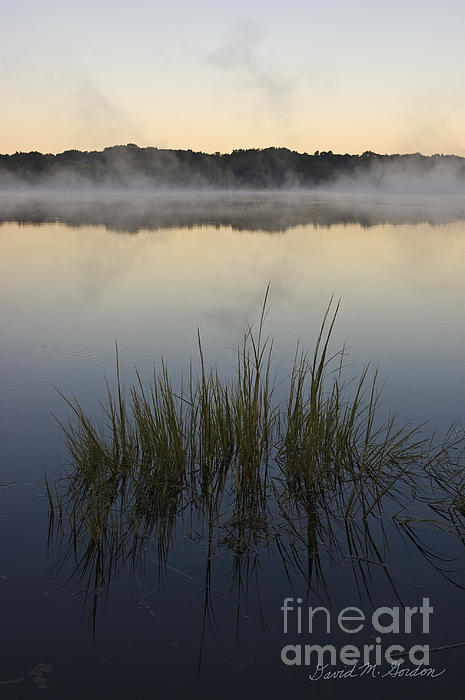 Morning Photograph - Morning Mist At Sunrise by David Gordon